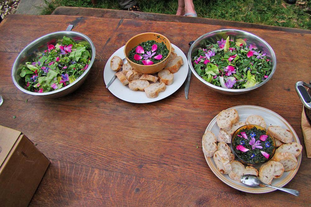 Mai 2017 sortie nature sur les plantes sauvages - Cuisine plantes sauvages comestibles ...